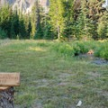 Due to high usage, there are a few site restoration areas in the meadows.- Canyon Creek Meadows