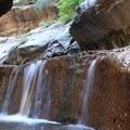 Left Fork of North Creek, Zion National Park.- Lower Subway Hike