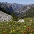 The trail to Leggit Lake offers one of the most stunning flower displays in the entire Sawtooth range.- Middle Fork of the Boise River, Leggit Lake