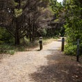 Returning to the trail.- New River ACEC Trails