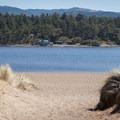 The first beach access is a half mile down the trail.- Floras Lake Trail Hike