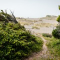 The second beach access along the Floras Lake Trail is about 1 mile into the hike.- Floras Lake Trail Hike
