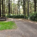 Typical site at Bastendorff Beach County Park.- Bastendorff Beach County Park Campground