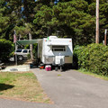 Typical site at Sunset Bay State Park Campground.- Sunset Bay State Park Campground