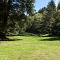 The day use area has a broad lawn for games and events.- Sunset Bay State Park