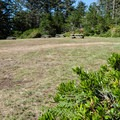 The day use area at Cape Arago State Park is just beyond the main parking area.- Cape Arago State Park