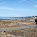 The walking path that leads around the point is ADA-accessible.- Coquille Point, Kronenberg County Park