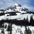 Mount Hood (11,250 ft) from the northwest.- Timberline Trail