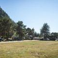 Humbug Mountain State Park Campground.- Humbug Mountain State Park Campground