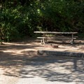 A typical site at Humbug Mountain State Park Campground.- Humbug Mountain State Park Campground