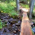Log crossing Lake Creek.- Heather Lake Trail