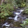 Creeks found on Heather Lake Trail.- Heather Lake Trail