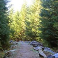 The start of Heather Lake Trail is well maintained and direct.- Heather Lake Trail