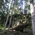 Heather Lake Trail.- Heather Lake Trail