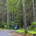 Dumpster and toilet facilities at Wish-Poosh Campground.- Wish-Poosh Campground