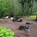Typical site at Wish-Poosh Campground.- Wish-Poosh Campground