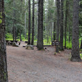Typical multi-family campground at Wish-Poosh.- Wish-Poosh Campground