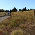 Start of the Sourdough Trail to Mount Freemont Lookout.- Mount Fremont Lookout Trail