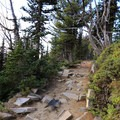 Rocky terrain at the start of the Mount Freemont Lookout Trail.- Mount Fremont Lookout Trail