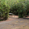 Many of the sites are tucked away in coastal shrubs.- Eel Creek Campground