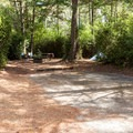 Typical site at Eel Creek Campground.- Eel Creek Campground