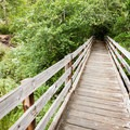 A bridge crosses Eel Creek from the parking area.- John Dellenback Trail