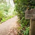 John Dellenbeck Trail.- John Dellenback Trail