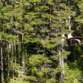 Yurts in the Umpqua Lighthouse State Park Campground are visible on the ridge above the lake.- Lake Marie