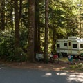 Typical RV sites in Umpqua Lighthouse State Park Campground.- Umpqua Lighthouse State Park Campground