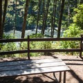 A few sites, yurts, and cabins enjoy a view down to Lake Marie.- Umpqua Lighthouse State Park Campground