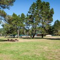 A broad, open field is sometimes the best playground.- William M. Tugman State Park