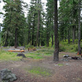 Open campsites at Red Mountain Campground.- Red Mountain Campground