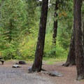 Typical campsite at Red Mountain.- Red Mountain Campground