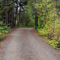 Gravel road at Red Mountain Campground.- Red Mountain Campground