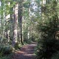 Deep Lake Loop hike.- Nolte State Park, Deep Lake