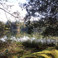Views of Deep Lake from the loop hike.- Nolte State Park, Deep Lake