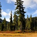 Schreibers Meadow in the fall.- Railroad Grade Trail