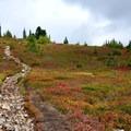 The trail to Railroad Grade.- Railroad Grade Trail
