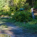 Sites by the road.- Napeequa Crossing Campground