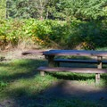 Campsite and connecting trail.- Napeequa Crossing Campground