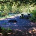 Typical campsite in Napeequa Crossing Campground.- Napeequa Crossing Campground