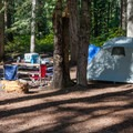 One of the five sites in use.- Grasshopper Meadows Campground