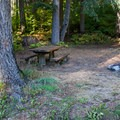 One of five sites in Grasshopper Meadows Campground.- Grasshopper Meadows Campground