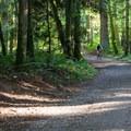 Access trail.- Duthie Hill Park