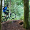 A jump out of the woods.- Duthie Hill Park