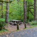 Typical campsite in Beckler River Campground.- Beckler River Campground