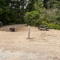 Typical campsite at Tahkenitch Landing Campground.- Tahkenitch Landing Campground
