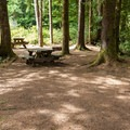 Many sites are close enough to function as group sites, though each is individually numbered.- Tahkenitch Campground