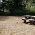 A picnic area near Tahkenitch Campground.- Tahkenitch Campground