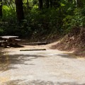 A typical site in Tahkenitch Campground.- Tahkenitch Campground